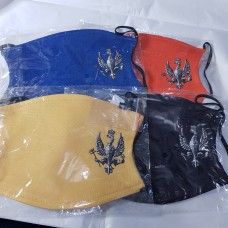 Squadron coloured Face masks