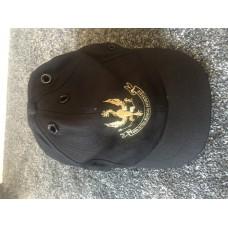 Hawk baseball cap